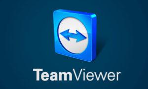 Team Viewer Portable Version 13.1